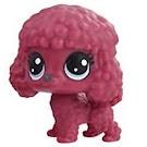Littlest Pet Shop Series 3 Tubes Priscilla La Poodle (#3-124) Pet