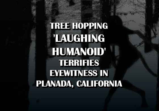 Tree-Hopping 'Laughing Humanoid' Terrifies Eyewitness in Planada, California