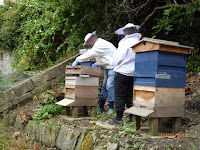 Unstacking the hive