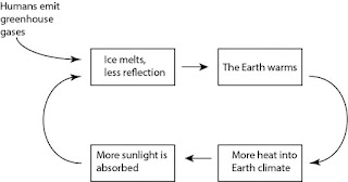 Melting ice positive feedback cycle diagram. (Illustration Credit: John Abraham) Click to Enlarge.