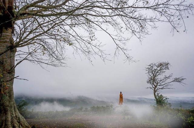 Sương mù tại chùa Linh Quy Pháp Ấn