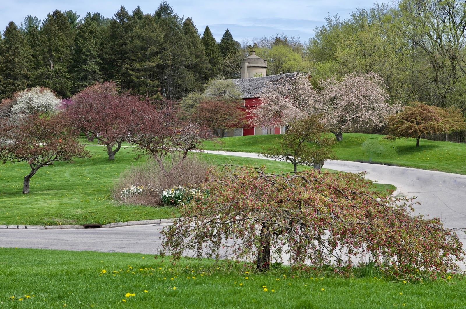 Milwaukee Area Parks Flower Power At Boerner Botanical Gardens