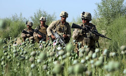 War is Good for Business and Organized Crime: Afghanistan's Multibillion Dollar Opium Trade. Rising