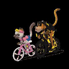 Life cycling