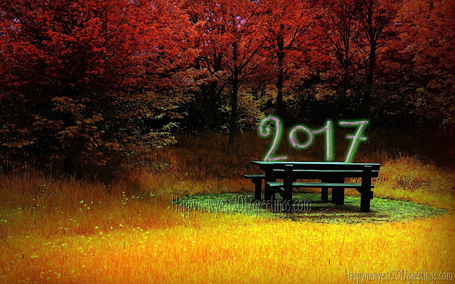 New Year 2017 HD Nature Pictures