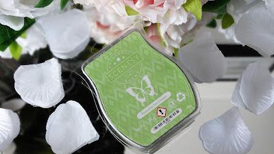 revue pistachio ice cream scentsy avis test