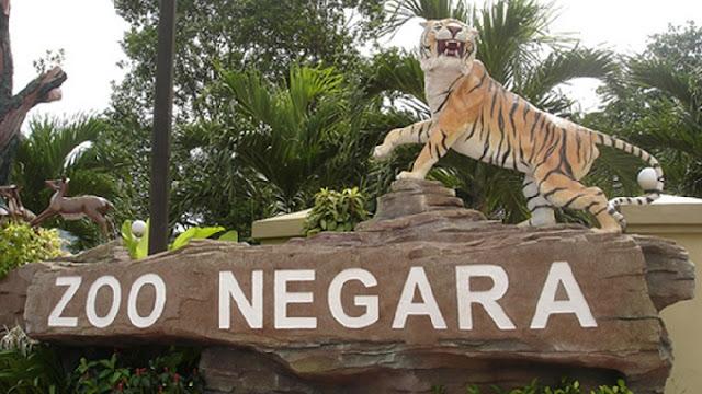 7. Zoo Negara (Kebun Binatang Kuala Lumpur)