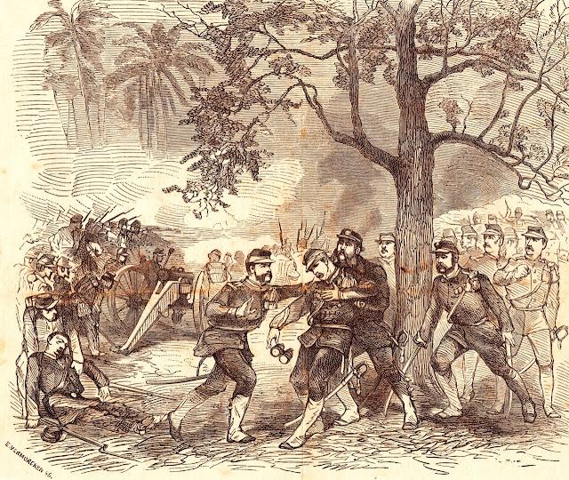 Pohon Kohler tempat dimana Kohler Merenggang nyawa