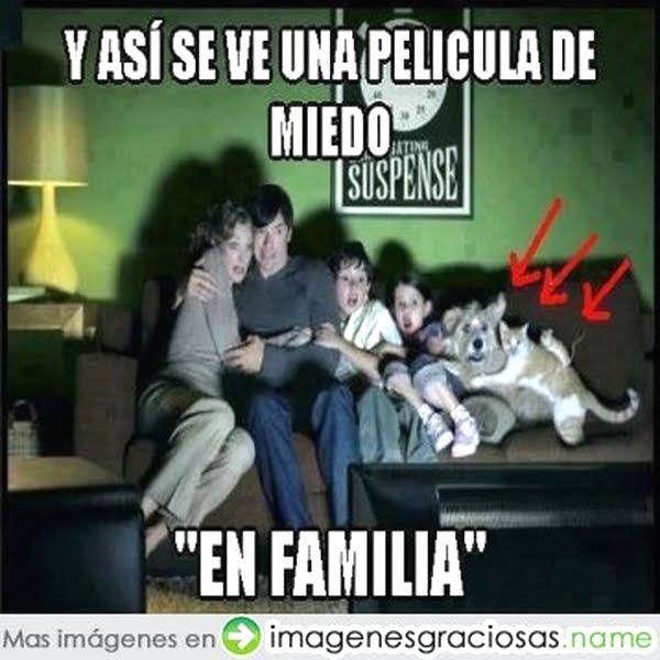 Imagenes Graciosas Chistosas Memes familia