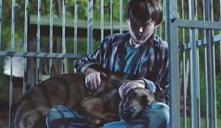 Max military dog movie 2015