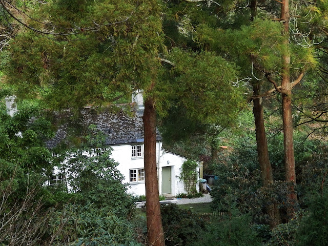House hidden in the trees at Trelissick, Cornwall