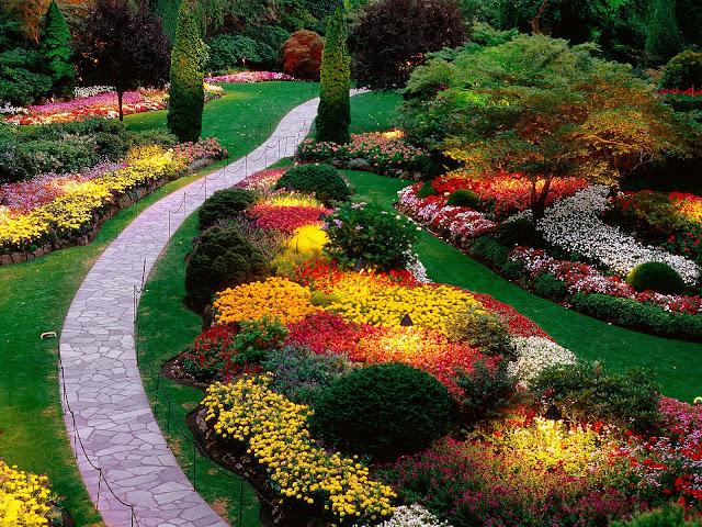 Secret Garden: Amazing Garden Stills
