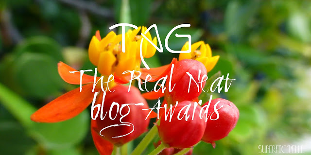 http://superfici-elle.blogspot.com/2015/10/tag-real-neat-blog-awards-mieux-vaut.html
