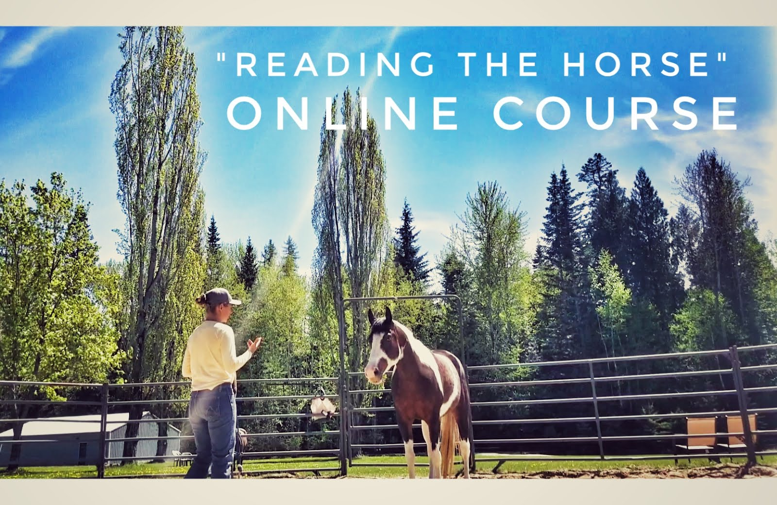 Online Horse Behavior Course