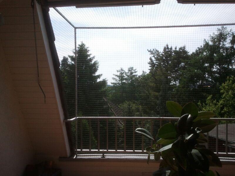 Fabulous Katzennetz NRW die Adresse für ein Katzennetz: Dachterrasse in GH32