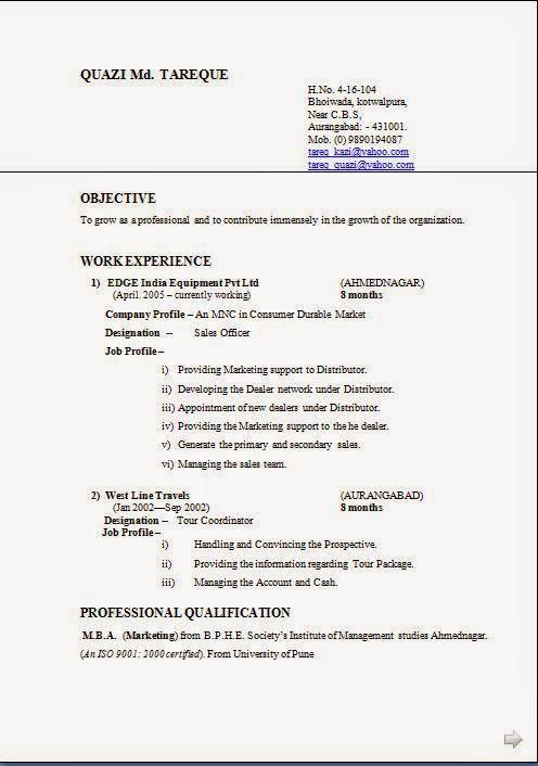 Matrimonial resume format doc