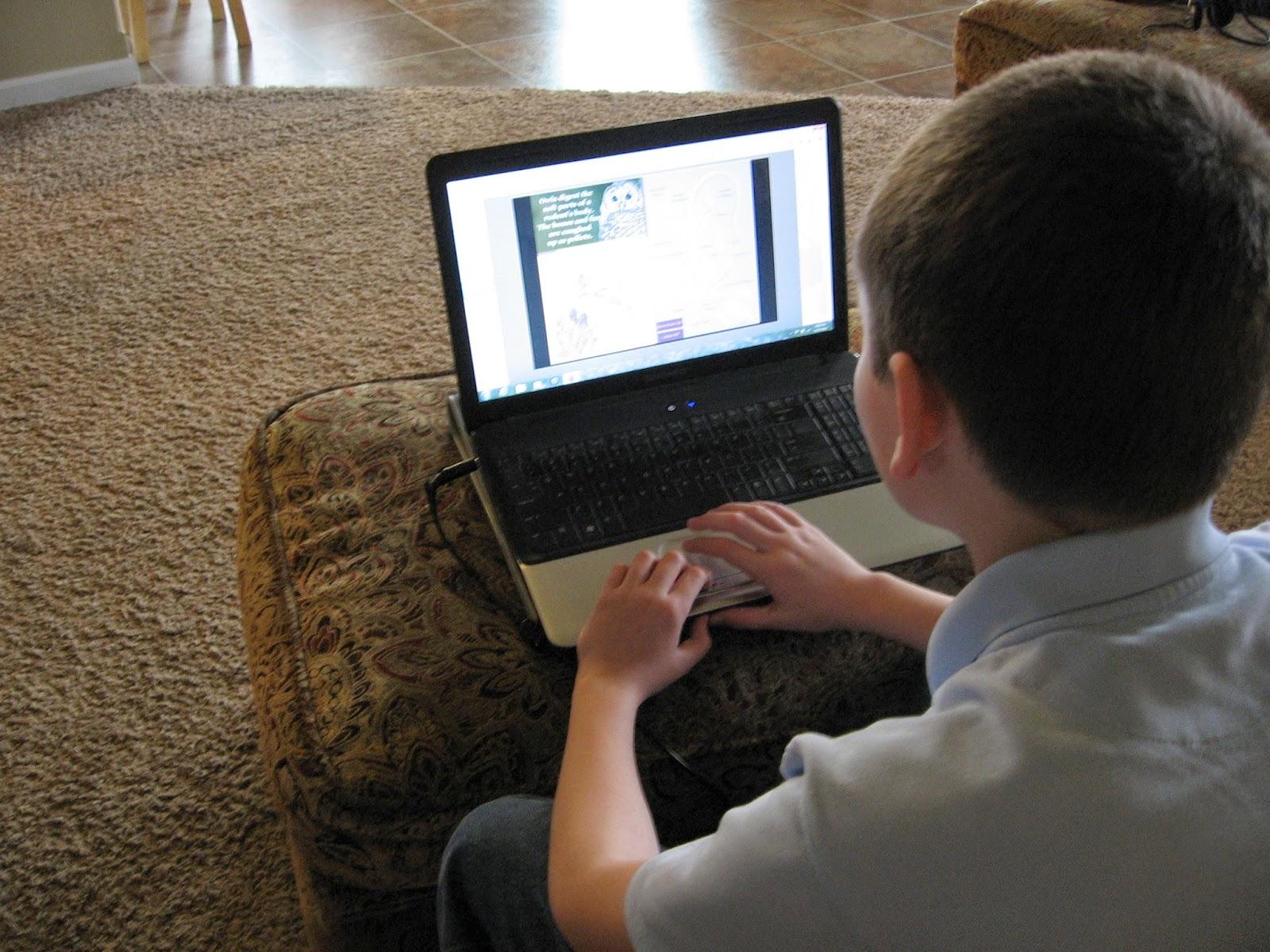 Almost Unschoolers Virtual Owl Pellet Options
