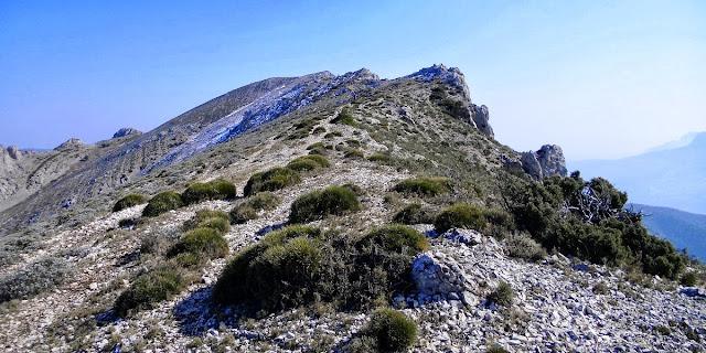 Cresta Serrella
