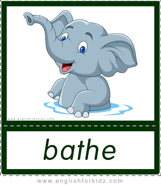 Bather (elephant) - printable animal actions flashcards for English learners