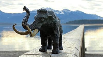 «Νεκρανάσταση»: Θα δημιουργήσουν το πρώτο υβρίδιο μαμούθ-ελέφαντα