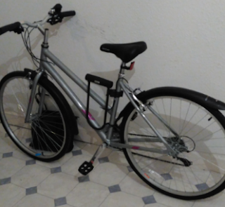 Stolen Bicycle - Glendale Active