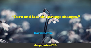 """Turn and face the strange changes."""