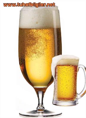 bira köpügü neyden oluşur