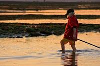 Pêche a pied a marée basse Trouville