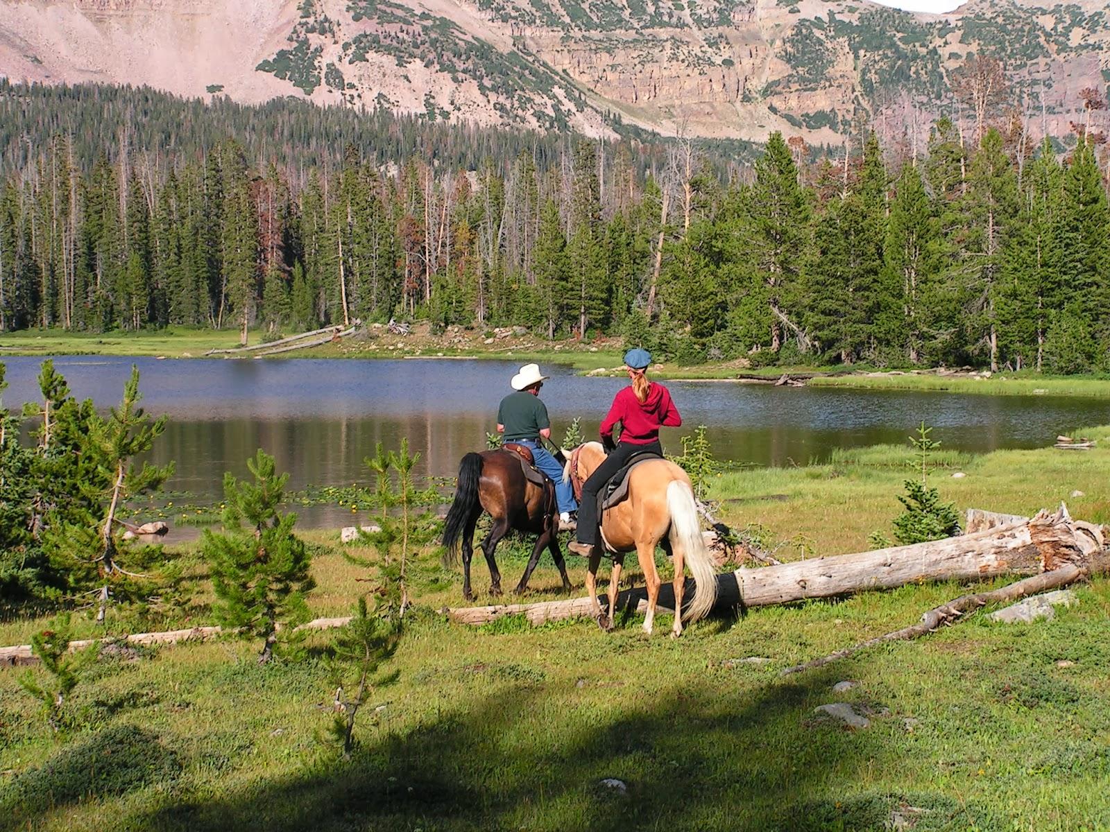Dream Packer Trail Adventures Mirror Lake Utah Horse Camping