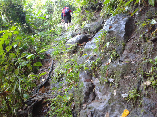Steep Terrain to the Next Falls