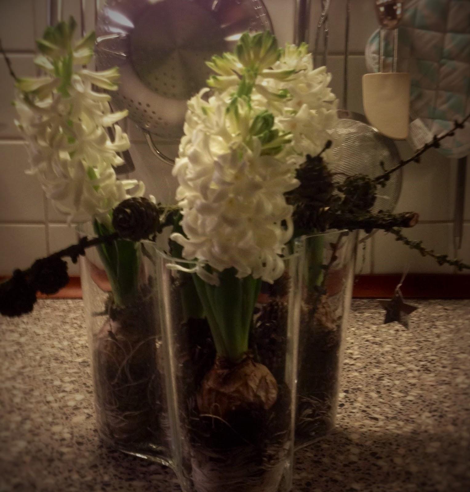 mariannes blomster jels
