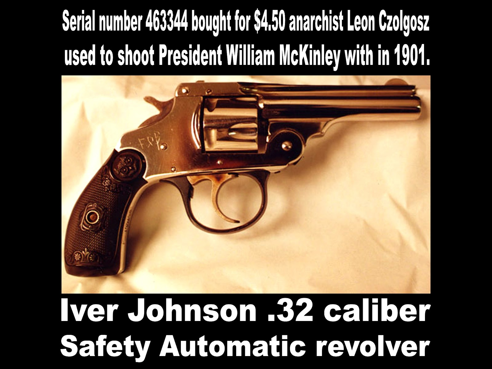 The Assassination of President William McKinley