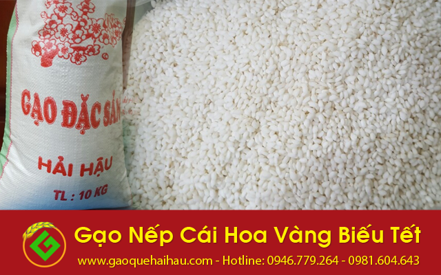Gạo nếp cái hoa vàng Hải Hậu tại Hà Nội giá bao nhiêu?