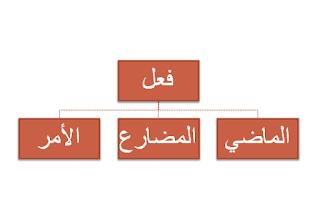 Fi'il Madhiy, Fi'il Mudhari' dan Fi'il Amr