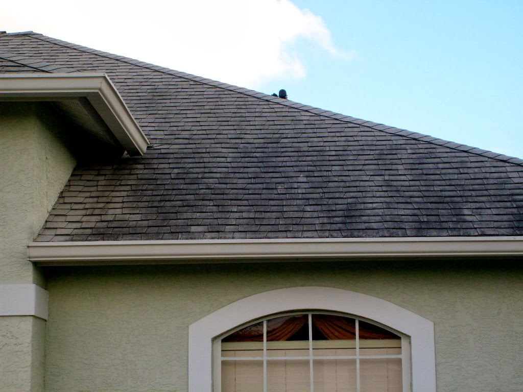 Best Ways to Clean Your Roof – Cleaning Roof Shingles