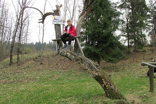 Ławeczka na drzewie