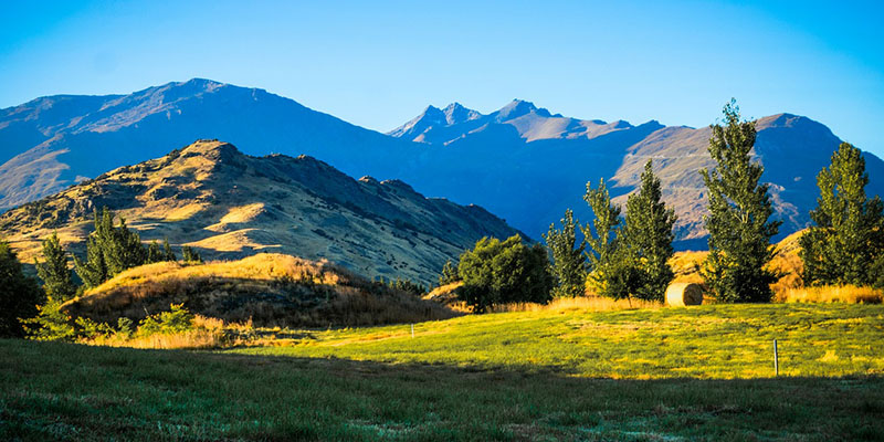紐西蘭打工度假簽證申請條件
