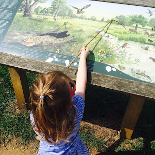 Jane pointing to animals on a sign