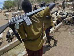 I made over N100m from kidnapping, my 'Oga' has killed many people – Herdsman confesses
