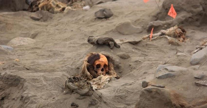 Hallazgo de 33 restos de niños confirma que Huanchaco fue un lugar sagrado para la cultura Chimú, informaron investigadores