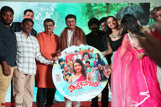 Mixture Potlam Movie Audio Launch Feb 2017   008.JPG