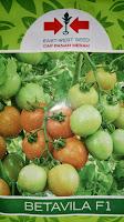 benih petani,tahan virus, buah lebat, cap panah merah, tahan layu, tahan cekaman calcium,Benih, Bibit, Buah besar, unggul, hibrida