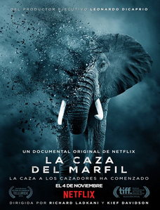El Exterminio del Marfil) (2016) [HD-R] [Sub-Español] [1 Link] [Mega]