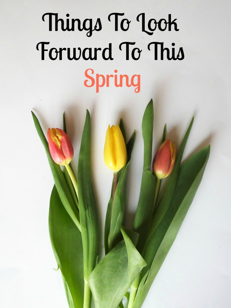 Things To Look Forward To This Spring