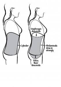 Prolapseevery Woman Needs To Know furthermore Pt For Tailbone Pain Part1 also What Is Testicular Cancer additionally How A Bladder Pressure Tank Works further 2992697. on bladder diagram