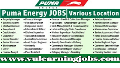Puma Energy | Puma Job Opportunities | Jobs In Worldwide
