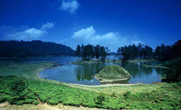 situ patenggang Tempat Wisata Alam Di Bandung Dan Sekitarnya