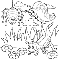 Spider Butterfly and Other Insect Images For Coloring
