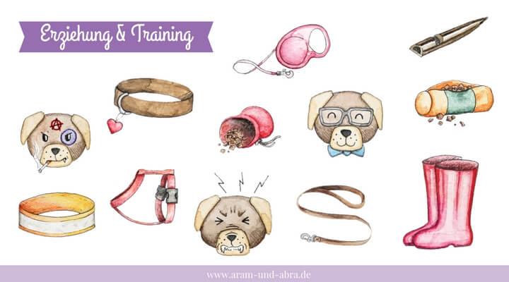 """""""Erziehung & Training"""""""