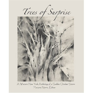 http://www.blazevox.org/index.php/Shop/Poetry/the-trees-of-surprise-a-western-new-york-anthology-of-the-surprise-october-storm-314/
